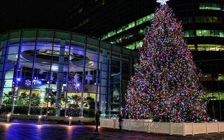 Фото бесплатно рождество, елка, гирлянда, огни, окна, свет, праздники