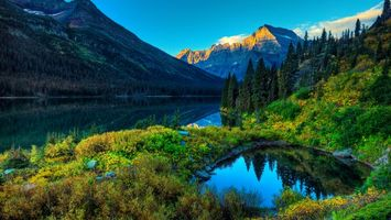 Бесплатные фото река, горы, деревья, елки, пейзажи, природа
