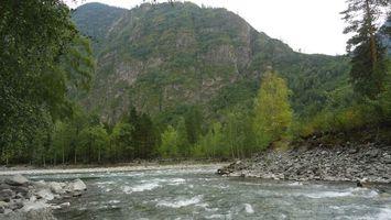 Бесплатные фото речка, мелководье, камни, гора, деревья, лес, природа