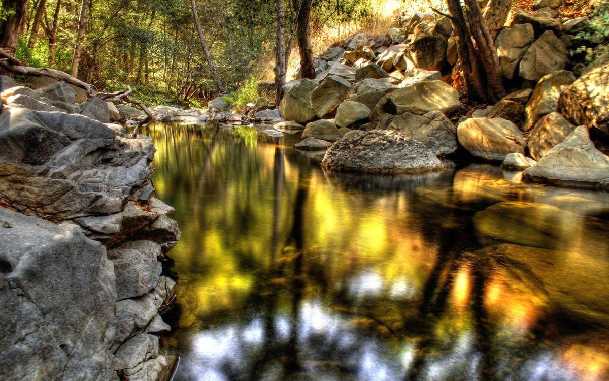 Фото бесплатно ручей, родник, ключ, в лесу, камни, валуны, чистая, вода, природа, природа