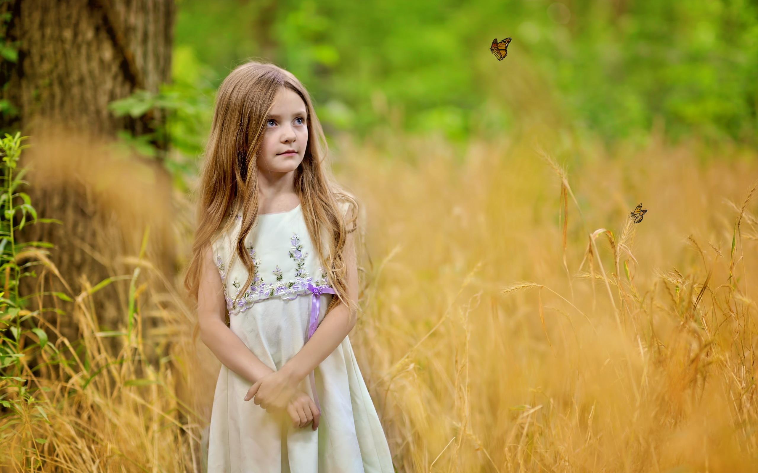девочка, поле, бабочки