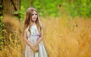 Фото бесплатно девочка, поле, бабочки