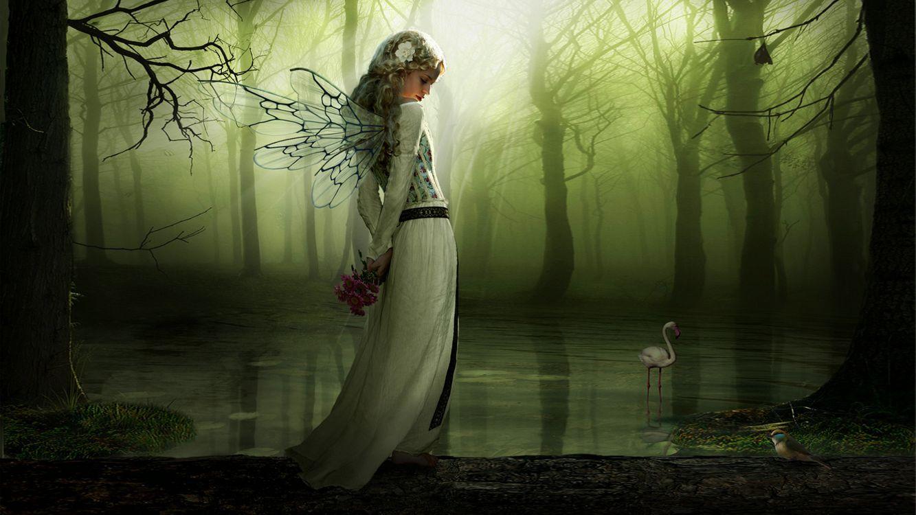 Фото бесплатно девушка, лес, арт, фея, цветы, птицы, девушки, фантастика, фантастика