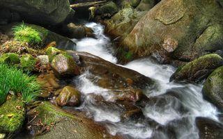 Бесплатные фото горный,ручей,камни,мох,трава,зеленая,природа