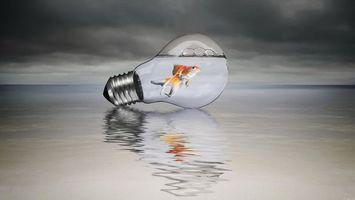 Бесплатные фото лампочка,рыба,вода,тучи,волны,отражение,разное