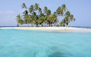 Фото бесплатно пальмы, природа, остров