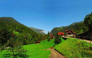 Бесплатные фото небо,деревья,лес,горы,холмы,трава,поле