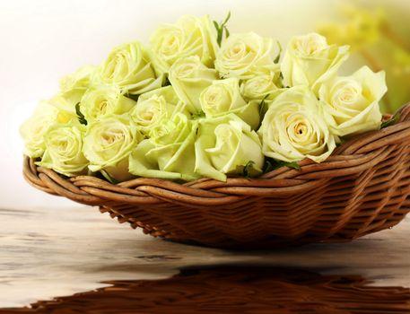 Бесплатные фото стол,корзина,плетеная,розы,белые,нежные,цветы