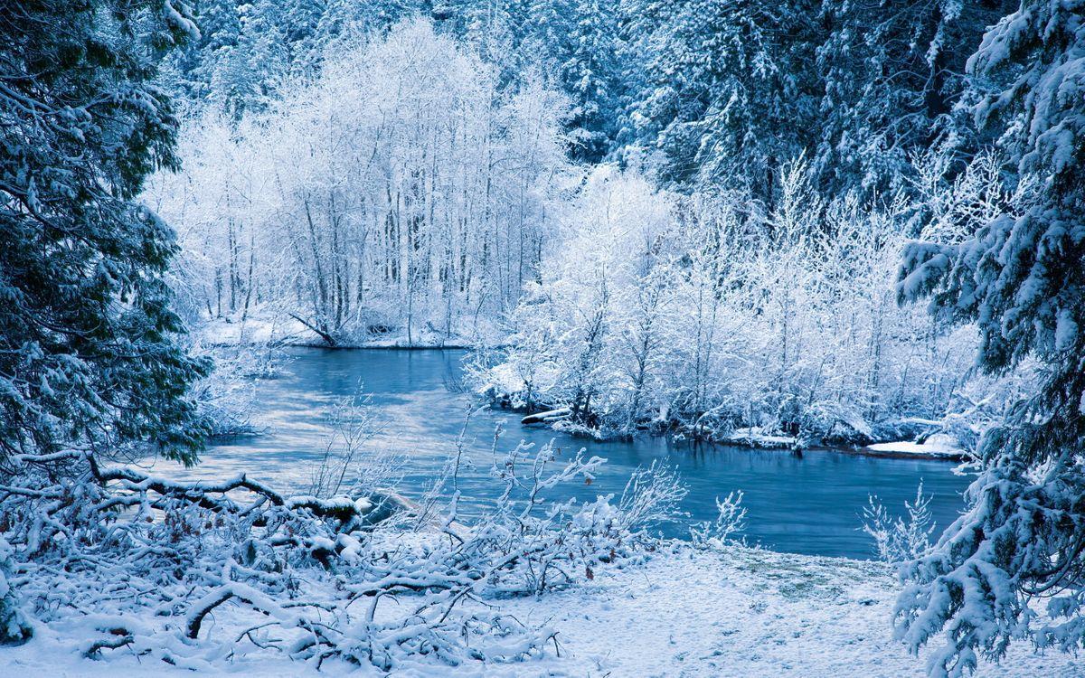 Фото бесплатно зима, река, лес, деревья, снег, лед, природа, природа