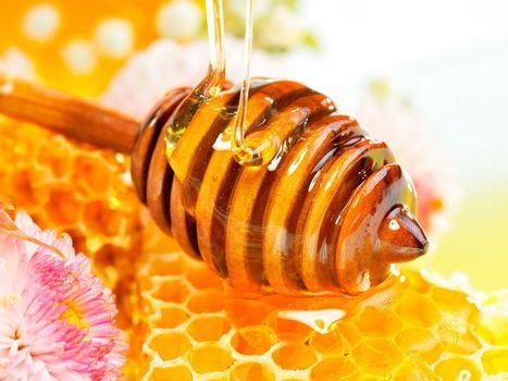 Заставки мед, цветок, улий