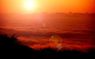 Бесплатные фото закат,солнце,блик,облака,тучи,деревья,горизонт
