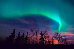 Фото бесплатно ночь, северное сияние, лес