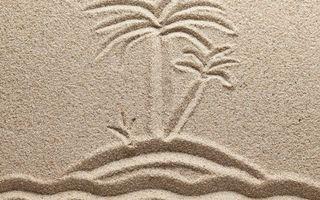Бесплатные фото песок,рисунок,море,остров,пальма,трава,разное