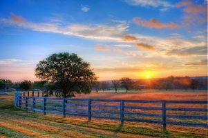 Фото бесплатно поле, солнце, забор