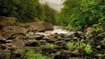 Фото бесплатно речка, горная, камни