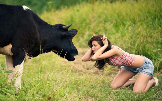 Заставки луг, девушка, корова