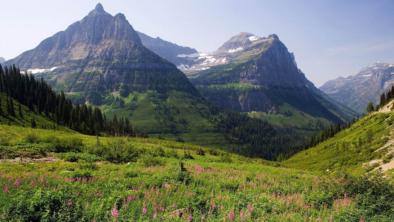 Фото бесплатно горы, трава, лес, деревья, снег, небо, природа, природа