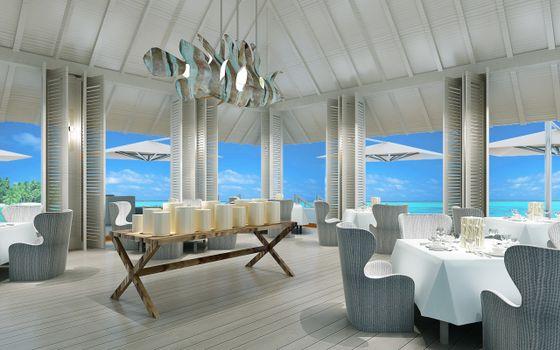 Photo free cafe, restaurant, tropics