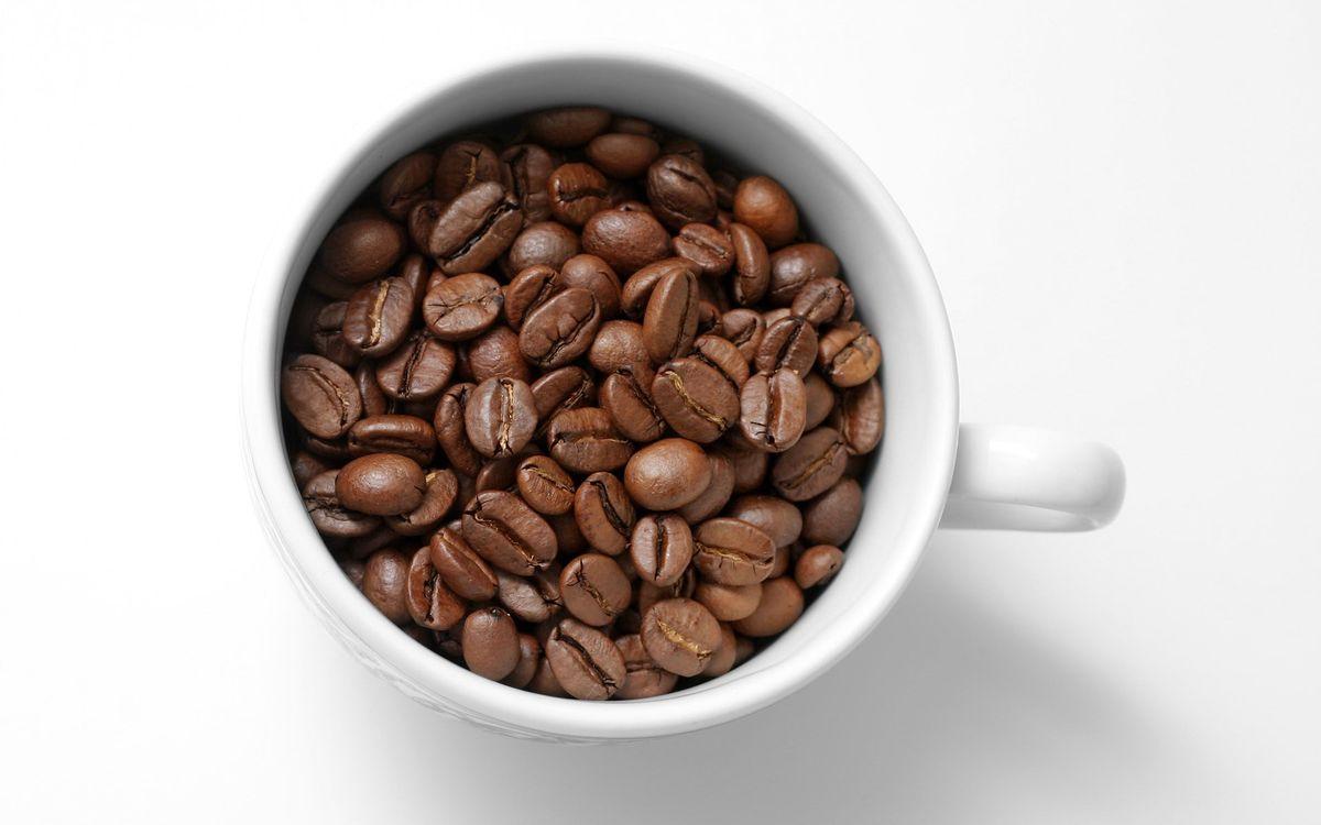Фото бесплатно кофе, зерна, чашка, кружка, фон, белый, стол, фото, разное, разное