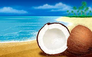 Бесплатные фото кокос,пляж,берег,вода,море,океан,деревья