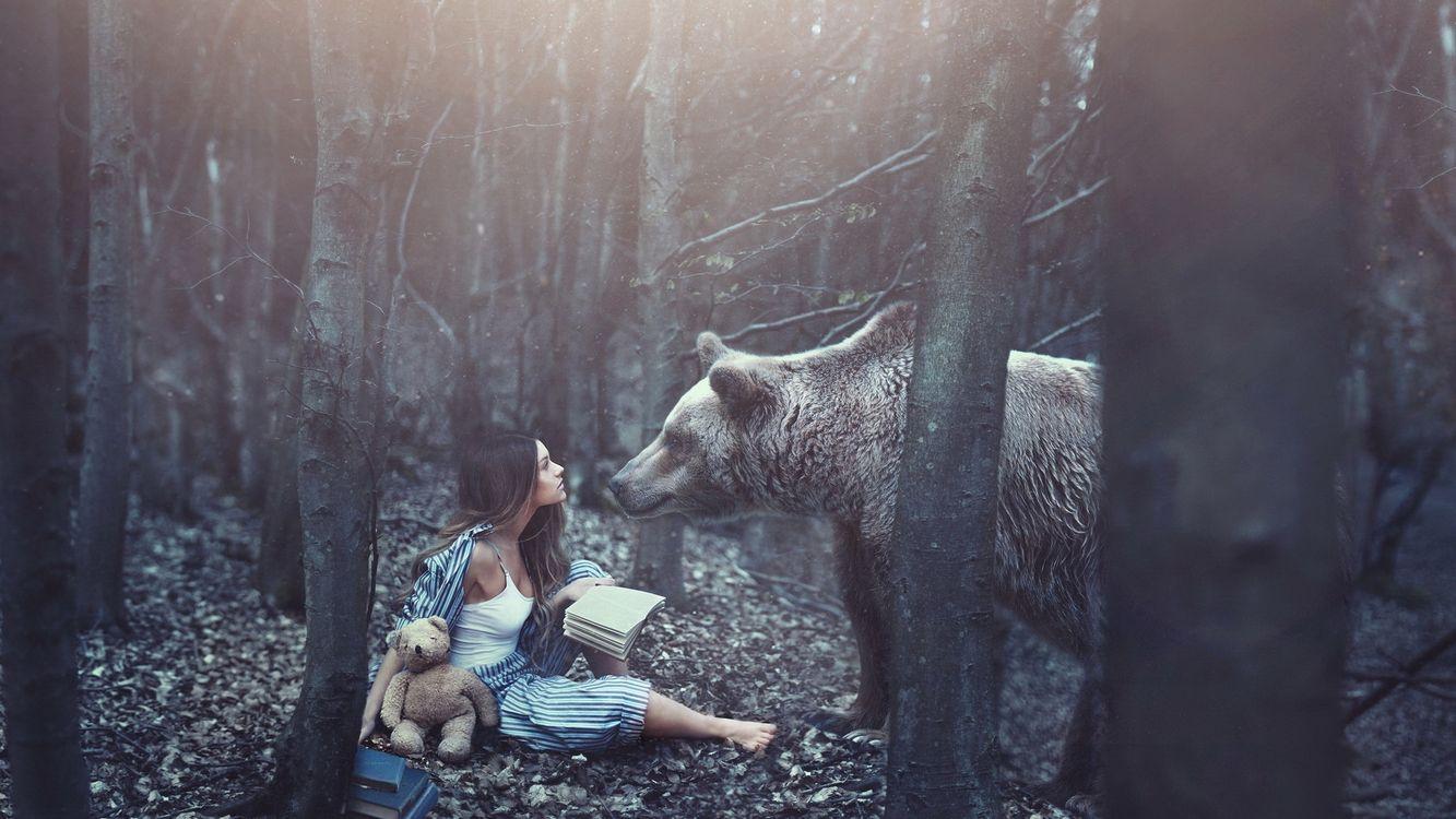 Фото бесплатно лес, девушка, читала, книга, игрушка, встреча, медведь, ситуации, ситуации