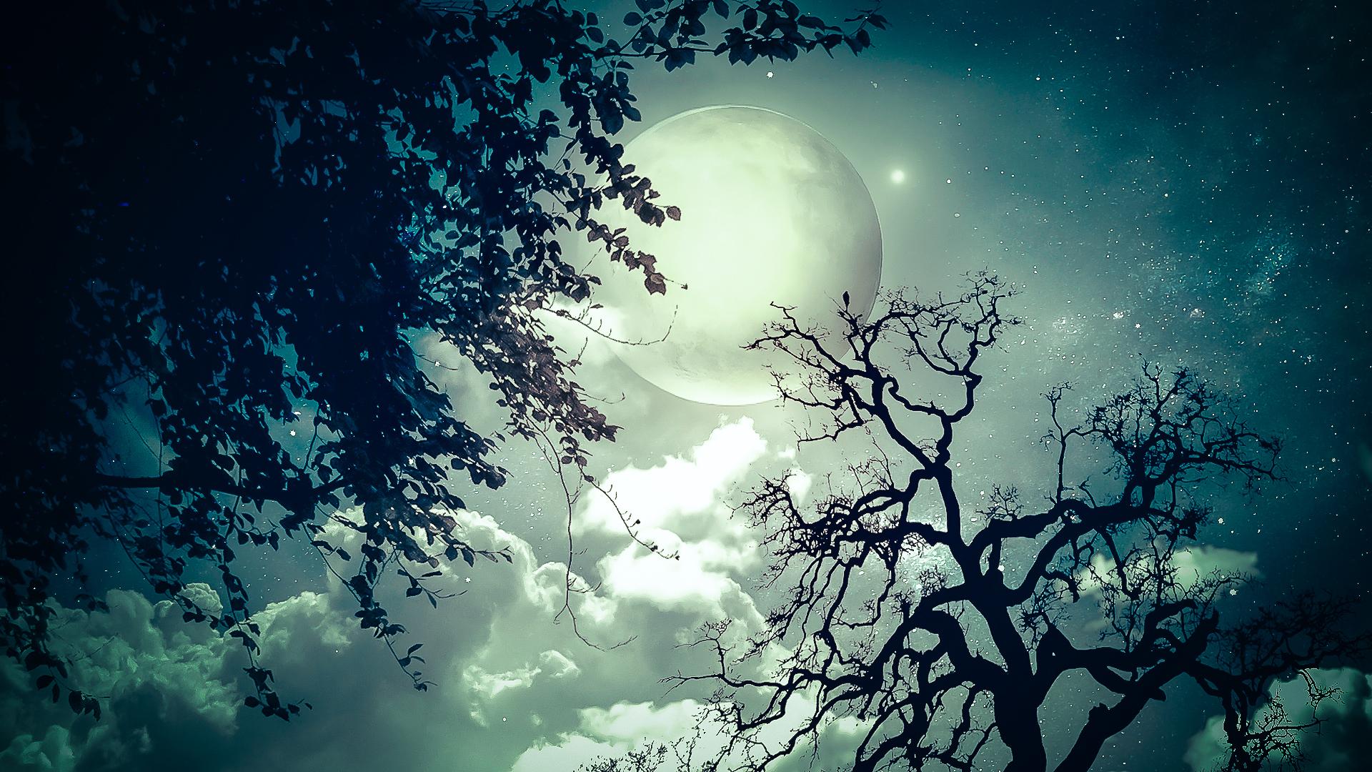 замок ночь небо луна бесплатно