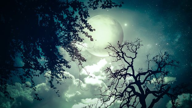 Photo free moon, large, view