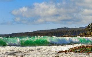Бесплатные фото море, волна, вода, лес, небо, облака, брызги