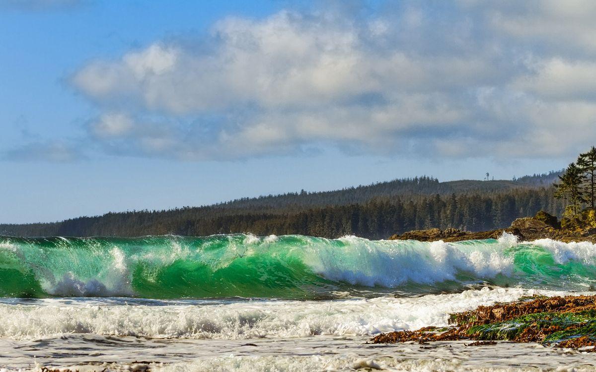 Фото бесплатно море, волна, вода, лес, небо, облака, брызги, природа, природа