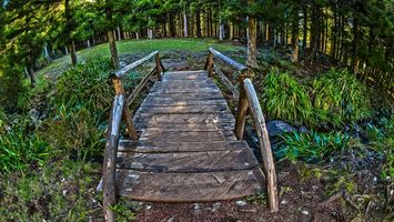 Фото бесплатно мост, деревянный, переправа