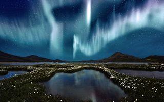 Бесплатные фото ночь,озера,цветы,сопки,небо,северное сияние,звезды