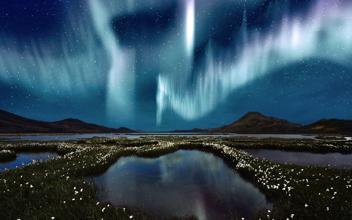 Фото бесплатно ночь, озера, цветы, сопки, небо, северное сияние, звезды, природа, природа