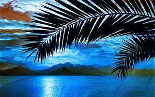Фото бесплатно пальма, листья, картина