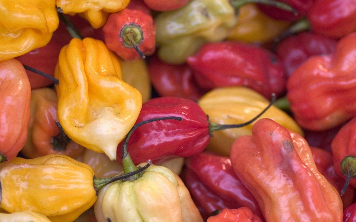 Фото бесплатно перец, болгарский, овощ, красный, желтый, продукт, питание, витамины, еда, еда