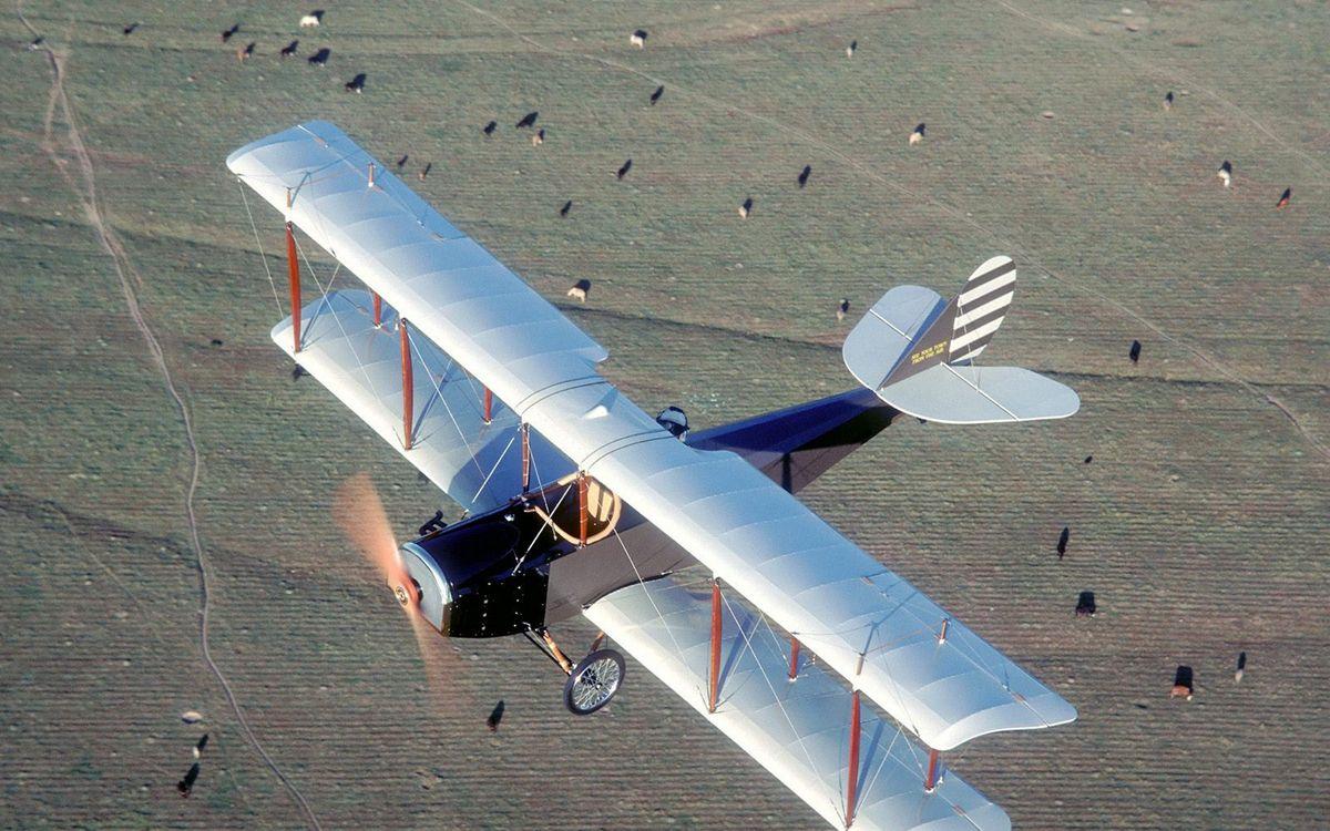 Фото бесплатно самолет старинный, винт, крылья, хвост, шасси, полет, земля, коровы, авиация - скачать на рабочий стол