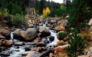 Бесплатные фото вода,река,небо,лес,горы,деревья,камни