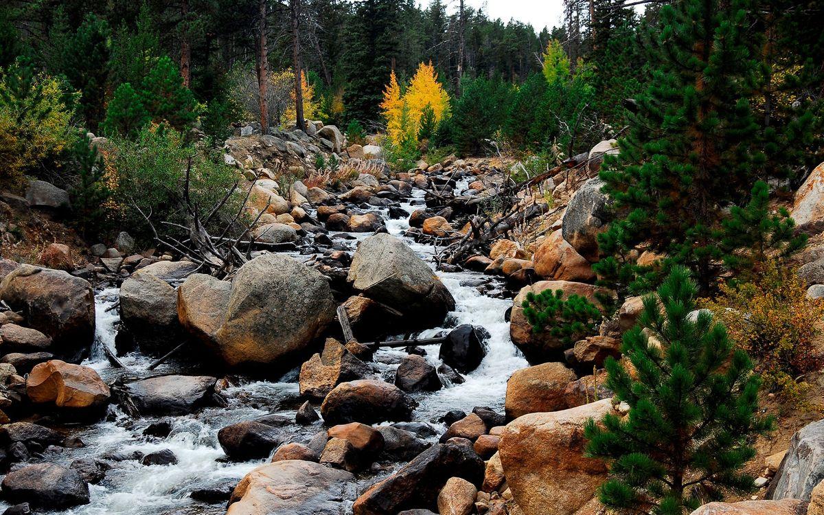 Фото бесплатно вода, река, небо, лес, горы, деревья, камни, природа, природа - скачать