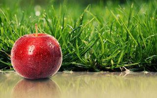 Фото бесплатно яблоко, поверхность, отражение, трава, зеленая, капли, вода, разное