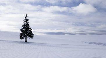 Фото бесплатно зима, облака, природа