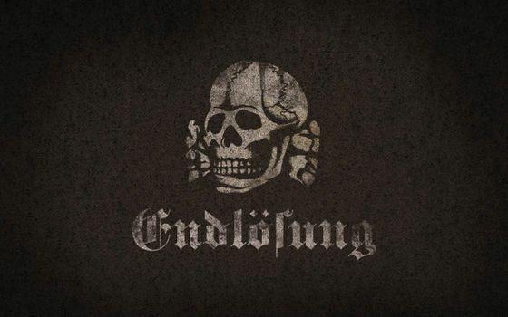 Photo free skull, bones, pirate