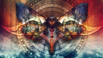 Заставки бабочка, несколько, круг