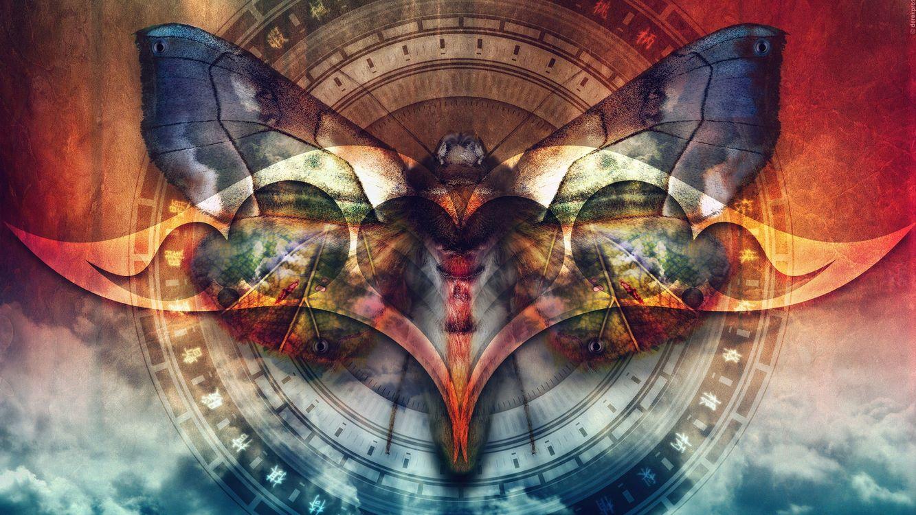 Фото бесплатно бабочка, несколько, круг, цветной, необычно, тени, абстракции, абстракции
