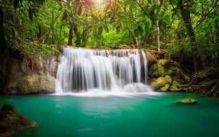 Бесплатные фото джунгли, трава, деревья, лес, зелень, водопад, вода