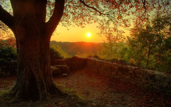 Photo free sunset, sun, clear sky