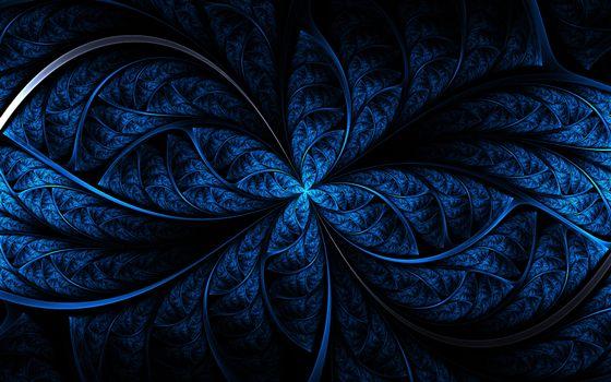 линии, цветок, узор, орнамент, синий