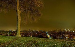 Фото бесплатно ноч, дерево, трава, дома, улицы, огни, фонари, город
