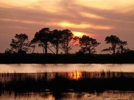 Бесплатные фото озеро,трава,отражение,солнце,закат,деревья,природа