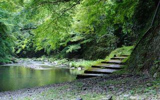 Фото бесплатно речка, камни, трава, деревья, лестница, природа, пейзажи