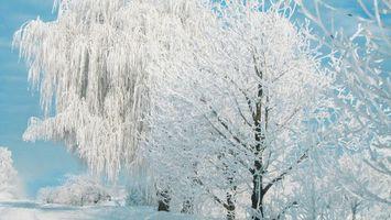 Заставки хижина, снег, пейзаж