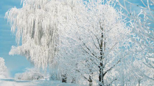 Фото бесплатно снег, зима, деревья, мороз, изба, дом, небо, деревня, природа, пейзажи